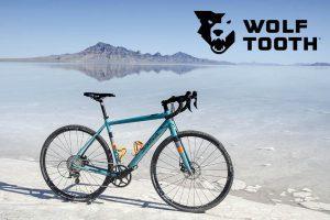 Il monocorna su una bici gravel